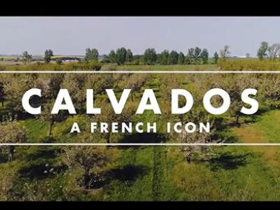 CALVADOS ON BOARD